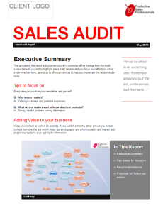 Audit Report Page 1